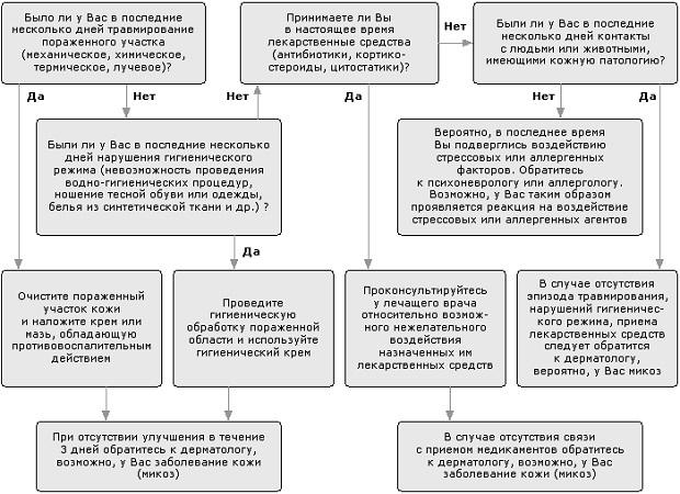 Симптомы микроспории у человека, лечение и профилактика