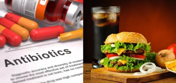 Дисбактериоз кишечника, симптомы и схема лечения у взрослых