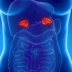Феохромоцитома, что это такое? Симптомы и лечение