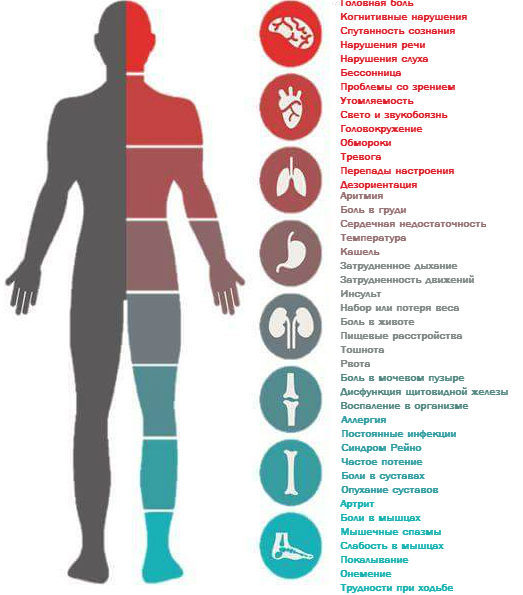 Болезнь Лайма: что это такое? Фото, симптомы и лечение