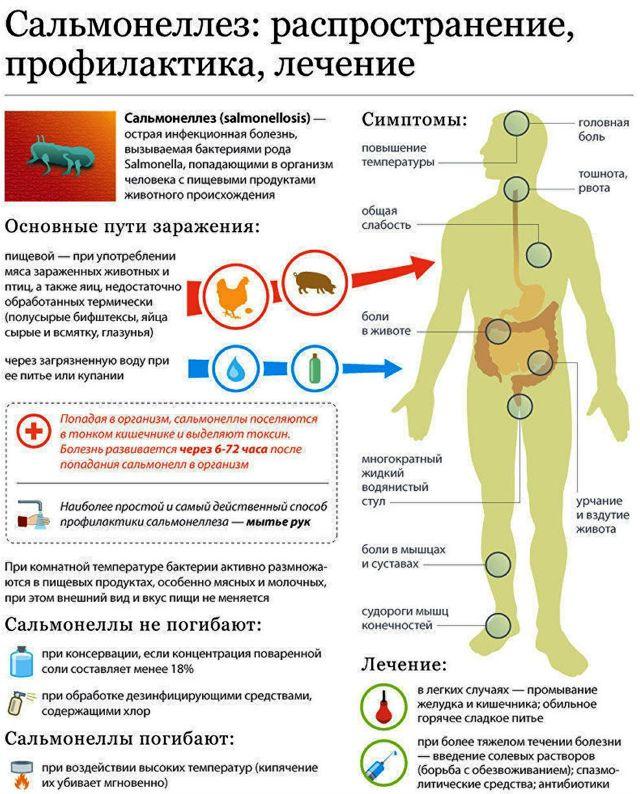 Признаки сальмонеллеза, пути заражение и схема лечения