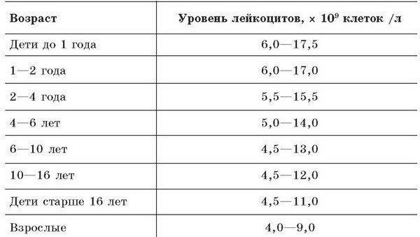 Лейкоциты в крови у женщин: норма