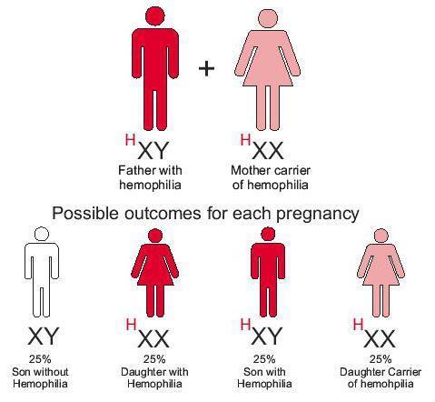 Гемофилия: что это такое, симптомы и лечение гемофилии
